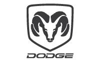 Rodamientos para Dodge